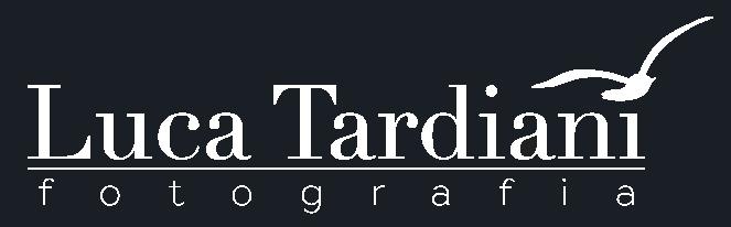 logo sito grigio scuro